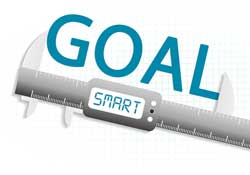 SMART Goal Check